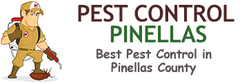 Pest Control Pinellas County FL